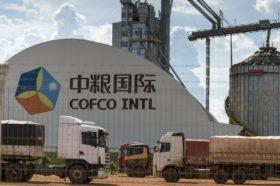 Escenario inédito: China no descarta comenzar a importar harina de soja argentina para cubrir el faltante de oferta estadounidense