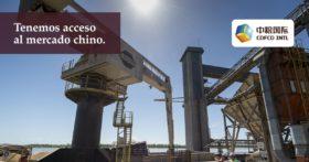 En el ciclo comercial 2017/18 una corporación estatal china exportó una de cada cuatro toneladas de trigo pan argentino