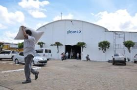 En Brasil prevén una súper cosecha de soja 2014/15: organismo oficial recomienda a los productores reducir el área de maíz tardío