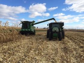 Se vienen varios días ideales para avanzar con la cosecha gruesa en la mayor parte de las regiones productivas