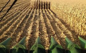 Los transportistas de granos no están solos: contratistas de cosecha gruesa piden un ajuste por inflación del 25%