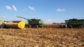 Esta semana la mayor parte de las precipitaciones se focalizarán en el sector oeste del país: se complica la cosecha gruesa en Córdoba