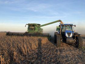 Se complica la cosecha gruesa: esta semana se proyectan hasta 75 milímetros en algunas zonas bonaerenses