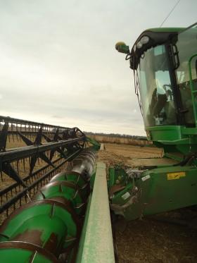 Hasta el domingo el tiempo seguirá siendo óptimo para avanzar con la cosecha gruesa