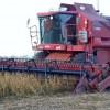 No se prevén grandes sobresaltos climáticos: el tiempo seguirá ideal para avanzar con la cosecha gruesa