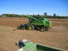 A partir del domingo habrá varios días sin lluvias: ideal para terminar de levantar la cosecha gruesa