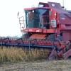 El jueves regresa el mal tiempo: vuelve a complicarse el avance de la cosecha gruesa