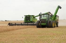 Comenzaron a realizarse operaciones de trigo a fijar garantizadas en Matba Rofex: cómo funciona