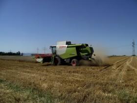 En lo que va de 2015 ingresaron apenas 69 cosechadoras importadas al mercado argentino: 70% menos que el año pasado