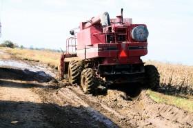 El viernes regresan las lluvias sobre la región pampeana: tiempo de descuento para terminar de cosechar el maíz