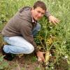 Cambio de paradigma: cultivos de servicio para mejorar la calidad de los activos biológicos necesarios para producir granos