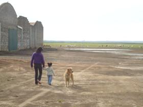 Argentina tiró la toalla: en 2014/15 caerá el área destinada a cultivos agrícolas tradicionales