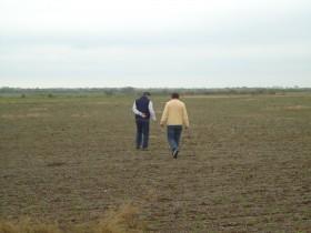 La demanda de alquileres agrícolas se concentró en los mejores campos: productores huyen de zonas con alto riesgo climático