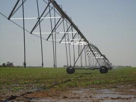 En San Luis todo es posible: quieren cobrar un canon de riego por usar agua de lluvia