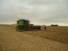 En lo que va de 2012 las cosechadoras generaron un déficit cambiario superior a 80 millones de dólares