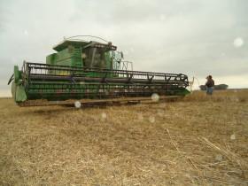 Se derrumbaron las importaciones de cosechadoras por las restricciones implementadas por el gobierno nacional