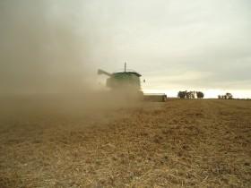 Comenzó a ingresar la cosecha de soja al circuito comercial: hubo un mes entero para asegurar precios superiores a 340 u$s/tonelada