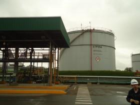 El mejor negocio: transformar aceite de soja en biodiesel para comercializarlo en el mercado interno