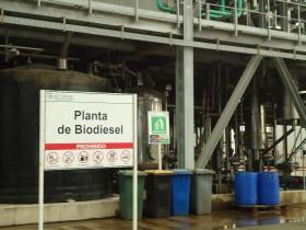 En los primeros cinco meses del año las exportaciones de biodiesel cayeron un 47%: el nivel más bajo desde 2009