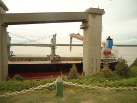 Una máquina de hacer dólares: el gobierno ya liberó el 22% del cupo de exportación de trigo 2012/13