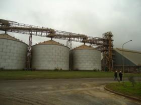Cuenta regresiva: los exportadores ya compraron un 40% del saldo exportable de maíz 2012/13
