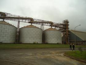 La capacidad ociosa de la industria aceitera argentina es del 30% por la competencia china y el bloqueo de la soja paraguaya