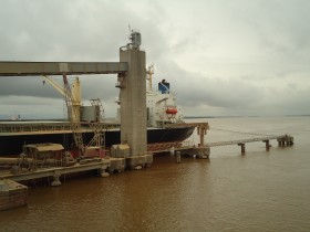 Ranking semanal: Noble, ADM y Bunge concentraron los permisos de exportación de trigo 2012/13