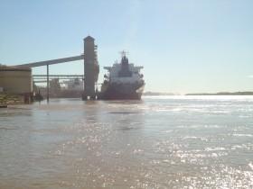Una ayudita para los molinos: el gobierno subsidia las exportaciones de harina de trigo con un FOB oficial inferior al de mercado