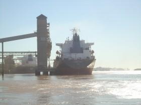 Recortan el saldo exportable de trigo: pero los molinos tienen vía libre para embarcar harina con subsidios indirectos