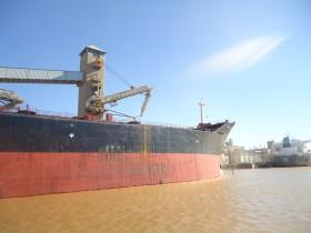 Se necesitan dólares: el gobierno nacional comenzará a liberar licencias de exportación de trigo 2013/14 para recaudar retenciones anticipadas
