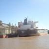 Volvimos: Argentina comenzó a recuperar el mercado brasileño de harina de trigo con ventas 25% superiores