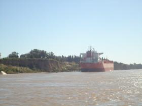 Argentina sobrevive gracias al yuyo: la participación de la soja en las exportaciones alcanzó un récord del 30%