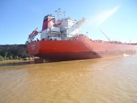 Argentina ya colocó embarques de maíz en EE.UU. por casi 175.000 toneladas