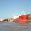 Sin exportaciones no hay divisas: en septiembre habrá nueve días sin carga de buques por un paro aduanero que sólo puede desactivar el gobierno