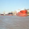 Ya se declararon exportaciones argentinas de trigo por casi 60 millones de dólares: un 88% menos que en el ciclo anterior