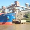 Está a punto de completarse el cupo de exportación de trigo 2013/14: sobrecompras de exportadores garantizan cereal barato para molinos