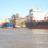 La exportación argentina de harina de soja generó divisas por más de 7600 M/u$s: Vietnam, Indonesia y Argelia concentran el 25% de la demanda