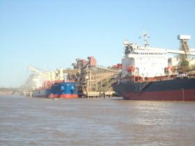 Harina de soja: las divisas generadas por el principal producto de exportación argentino crecieron más de un 40% en lo que va del año