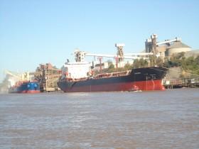 El gobierno pretende recaudar 360 millones de dólares con retenciones anticipadas de trigo 2012/13