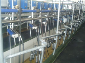 Recuperación parcial del valor relativo de la leche: aún no es suficiente para quitarle el respirador artificial a la mayor parte de los tambos
