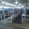 Subsidio agrícola: crece el valor relativo de la leche gracias a la destrucción del precio del maíz