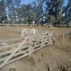 Hasta fines de enero no se prevé la aparición de lluvias importantes sobre la región pampeana