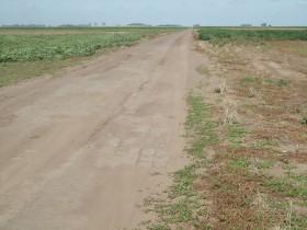 Esta semana no se esperan lluvias en ninguna región productiva: tiempo ideal para avanzar con la cosecha