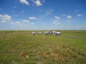 Confianza cero: se derrumbaron los precios del trigo 2013/14 al conocerse el plan oficial de reintegro de retenciones