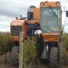 El gobierno creará una plataforma para transparentar las condiciones de todas las operaciones de venta de productos vitivinícolas