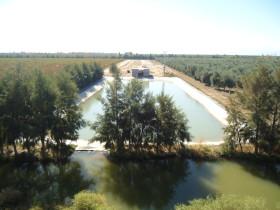 Con el sinceramiento energético los olivícolas pasaron a ser empleados de Cammesa: la electricidad pasó de un tercio a representar la mitad del costo de producción