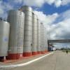 Récord mensual de exportaciones argentinas de leche entera en polvo por los buenos precios internacionales