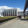 Otro regalo asiático: el precio promedio de exportación de la leche en polvo argentina sigue superando los 5000 u$s/tonelada