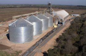 Dieron de baja DJVE por 1,11 millones de toneladas de productos agroindustriales registrados antes de la implementación de las retenciones móviles