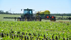 Missouri y Arkansas prohibieron temporalmente la comercialización y uso de Dicamba para cortar avalancha de denuncias por daños